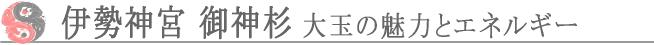 伊勢神宮 御神杉 大玉の魅力とエネルギー